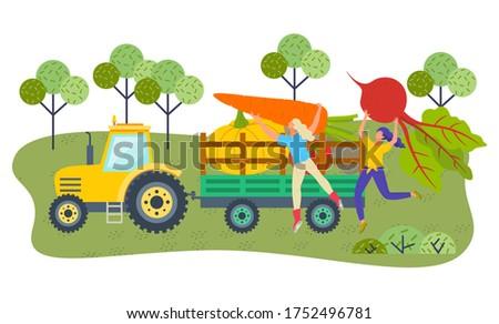 молодые девочек Фермеры большой овощей внутри Сток-фото © robuart
