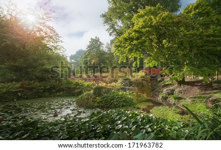Lily pond in the Cotswold on a summers afternoon, England Stock photo © jayfish