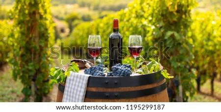 Stock fotó: áramló · vörösbor · üveg · hordó · szabadtér · Bordeau