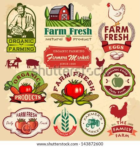 オーガニック 農家 ファーム 野菜 作り出す 収穫 ストックフォト © patrimonio