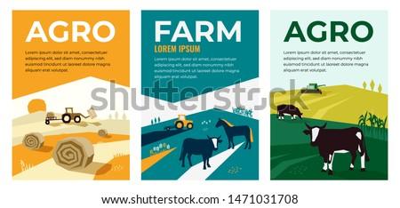 rural design Stock photo © ivonnewierink