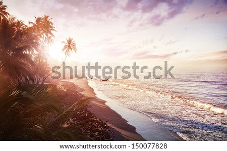 View of morning sea with palm tree silhouettes and fishing nets Stock photo © tannjuska