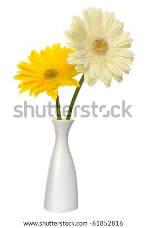bella · rosso · Daisy · bianco · vaso · isolato - foto d'archivio © tetkoren
