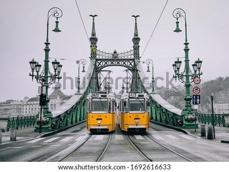 Vrijheid brug Boedapest Hongarije vrijheid plaag Stockfoto © borisb17