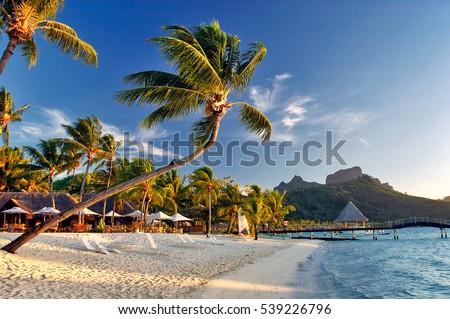 Tahiti fransız polinezya plaj tatil seyahat Stok fotoğraf © Maridav