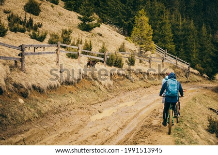 bike trail and horse riding or running track Stock photo © PixelsAway