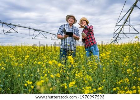 Irrigation in oilseed rape field on cloudy day Stock photo © stevanovicigor