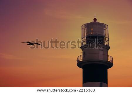 リガ ラトビア 灯台 日没 飛行 鴎 ストックフォト © 5xinc