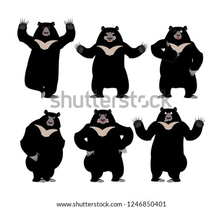 Himalayan bear set Emotion and posture. Cheerful and angry wild  Stock photo © popaukropa
