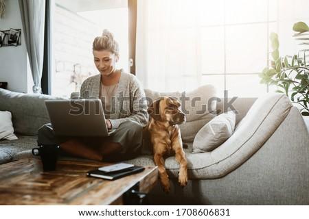 businesswoman working on laptop stock photo © wavebreak_media