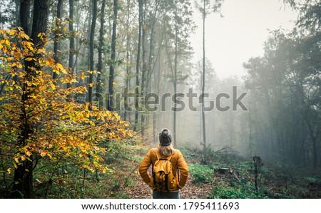Nature Tourist Stock photo © THP