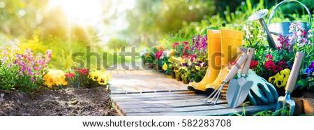 Tuingereedschap bloemen klaar boom voorjaar hout Stockfoto © AndreyPopov