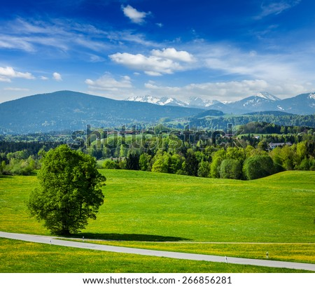 German idyllic pastoral countryside in spring with Alps in backg Stock photo © dmitry_rukhlenko