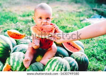 Bebé melón cute delicioso agua Foto stock © luckyraccoon