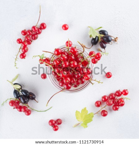 minimalist view of redcurrant Stock photo © taviphoto