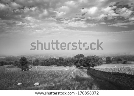 Scenic view of stone wall alongside fields in the Cotswold, Engl Stock photo © jayfish