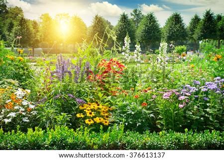 Hivatalos tavasz kert színes friss tulipánok Stock fotó © neirfy