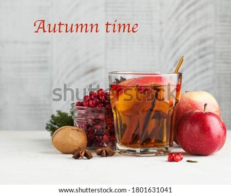 Hot thee najaar vers mint bladeren Stockfoto © BarbaraNeveu