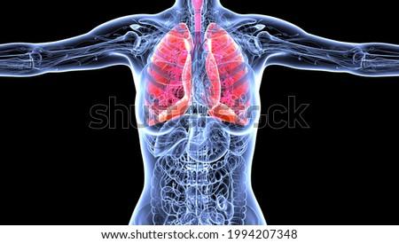illustrazione · 3d · sangue · particelle · focus · salute · medicina - foto d'archivio © tashatuvango