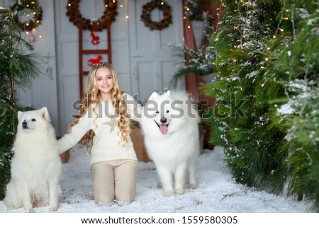White woolly purebred dogs and a blonde girl surrounded by green New Year trees and on artificial sn Stock photo © ElenaBatkova