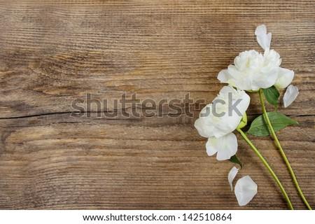 Merő fehér virágok virágmintás művészet esküvő Stock fotó © Anneleven