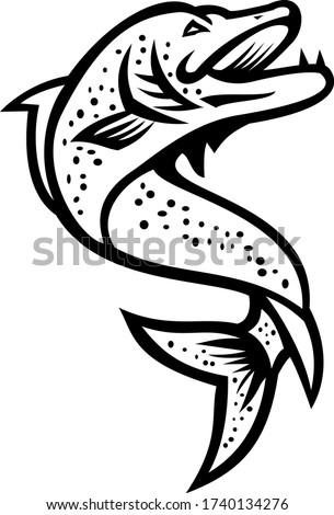 északi hal ugrik felfelé feketefehér retro Stock fotó © patrimonio