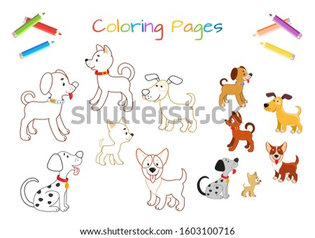 educational shadows game with animals coloring book page Stock photo © izakowski