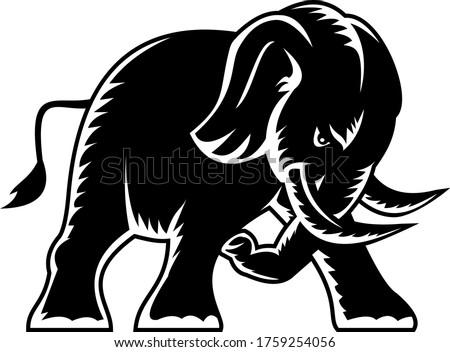 Enojado elefante vista lateral mascota blanco negro estilo Foto stock © patrimonio