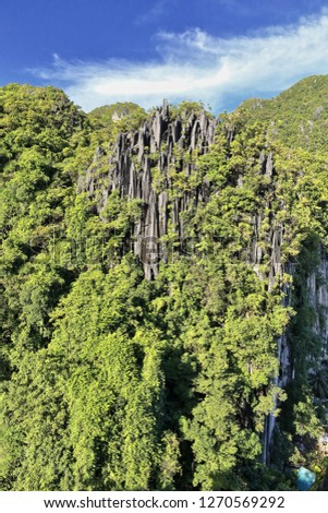 秋 · 森林 · 山 · スロープ · ツリー - ストックフォト © arrxxx
