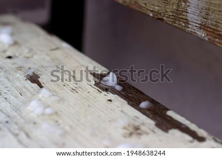 hailstones on wooden bench Stock photo © Digifoodstock
