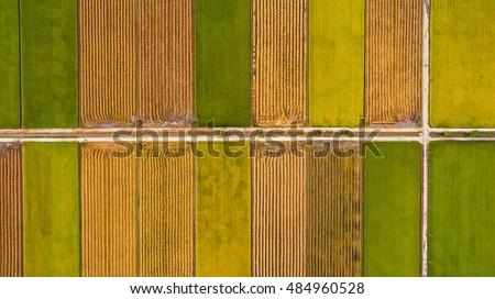 Antenne top foto vliegen groene Stockfoto © galitskaya