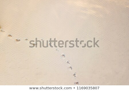 Overhead view of a footprint on the sand at beach Stock photo © wavebreak_media