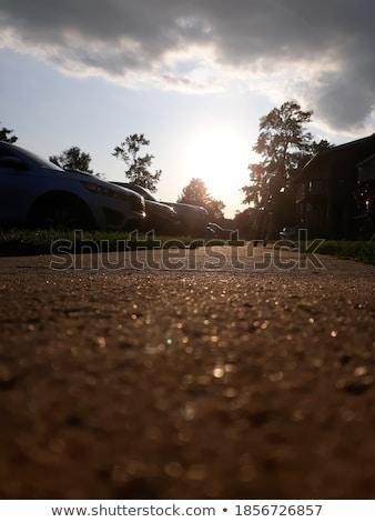 güç · yürüyüş · kadın · park · eğitim · güzel - stok fotoğraf © iko