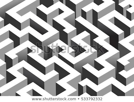 Siyah karmaşık labirent izometrik beyaz Stok fotoğraf © evgeny89