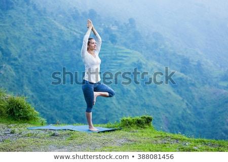 Nő jóga fa póz hegyek kint Stock fotó © dmitry_rukhlenko