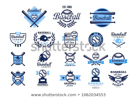 Baseball Template with Wings Stock photo © chromaco