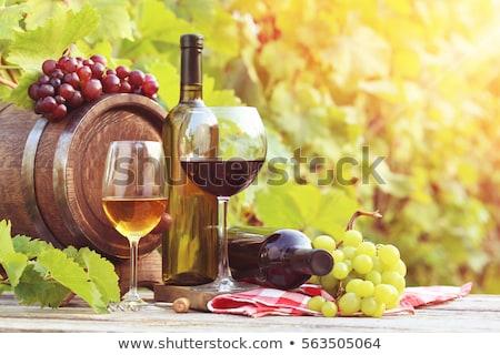 лозы листьев красный осень подробность Сток-фото © rmarinello