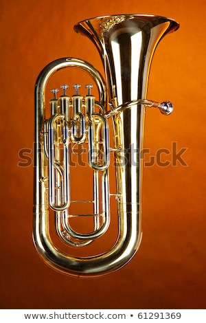 Complete Tuba Euphonium Isolated Stock photo © mkm3