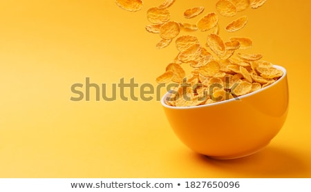 Kukoricapehely tál gabonapehely fehér csobbanás diéta Stock fotó © leeser