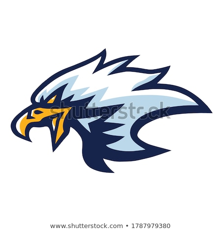 Stock photo: Mascot Head Of An Eagle Vector Illustration