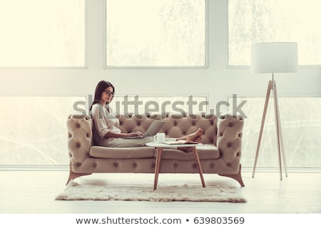 Portrait of a happy young lady sitting on sofa, using laptop stock photo © HASLOO