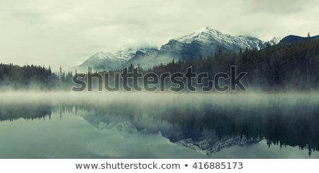 Rocky mountains in the morning fogs Stock photo © bbbar