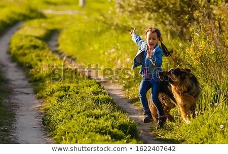 девочку · два · собаки · небе · собака - Сток-фото © cynoclub