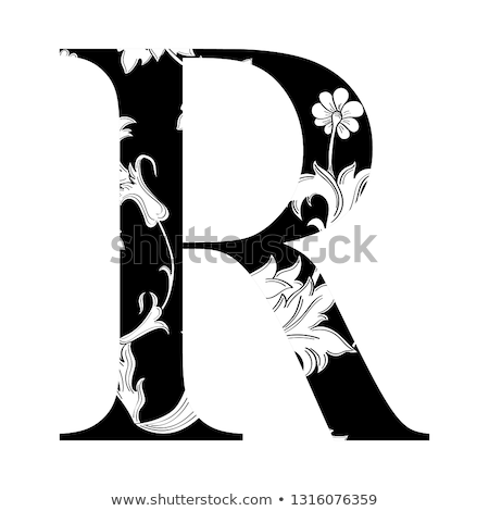 Floral Decoration Elements Stylized Traditional Flowers vector r Stock photo © havlin_levente