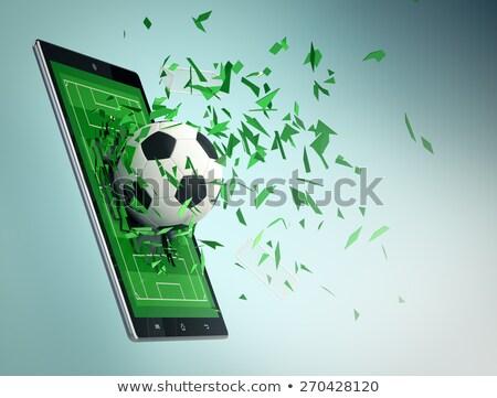 футбольным · мячом · области · различный · флагами · чемпионат · трава - Сток-фото © benchart