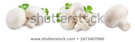 champignons, white background, Stock photo © maisicon