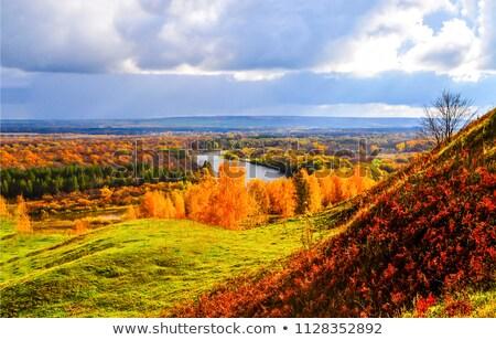 Arkansas völgy őszi színek mély folyó folyik Stock fotó © macropixel