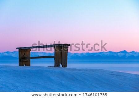 морозный · снега · покрытый · трава · мнение · сезонный - Сток-фото © morrbyte