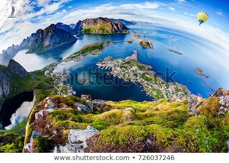 picturesque view on lofoten stock photo © harlekino