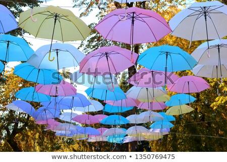 protection against rain stock photo © kotenko